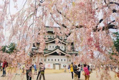 tour Nhật Bản – AOMORI – FUKUSHIMA – IWATE